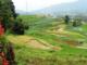 Salah satu pemandangan indah dari Nagari Andaleh ke arah timur desa itu.(foto.Yetti Harni).-