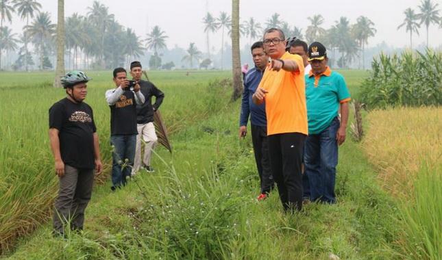Wako Payakumbuh bersama rombongan menelusuri irigasi di Taruko.