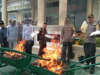 Bupati Irdinansyah Tarmizi beserta para forkopinda sedang membakar barang bukti ganja dan ijazah palsu.