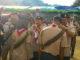 Temu Lomba Pramuka Penegak dan Pramuka Pandega TLTD IV Tahun 2019 Kwarda Gerakan Pramuka Provinsi Jambi di Desa Siulak Deras Mudik Kabupaten Kerinci,