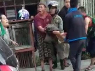 Evakuasi wara Pendung yang diseruduk babi hutan.
