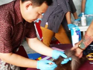 Petugas kesehatan hewan sedang vaksinasi hewan piaraan masyarakat di halaman kantor Dinas Peternakan dan Keswan Sumbar.