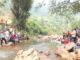 Suasana saat pembukaan lubuak larangan d Jorong Sungai Dareh, Sumiso, Tigo Lurah.