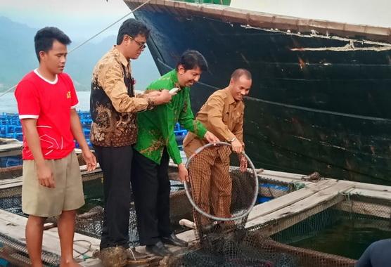Yosmeri saat meninjau salah satu lokasi budidaya ikan laut di Sumbar.