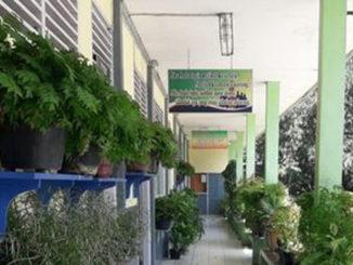 Keindahan di teras bagian tengah gedung lokal SMK Cendana Padang Panjang.