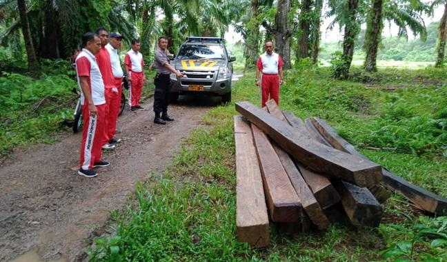 Sebelas kayu tak bertuan yang diamankan Polsek BAB Tapan.