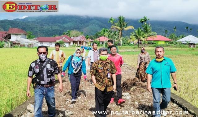 Kadis DPM Kab.Pasaman Hasiholan Hutagalung meninjau pelaksanaan kegiatan Padat Karya (PKT) di nagari Pauh Kecamatan Lubuk Sikaping.