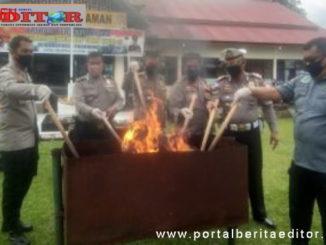 Pemusnahan 15 kg ganja di Polres Pasaman.