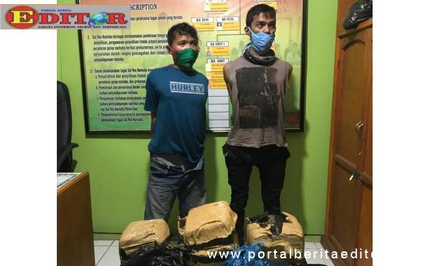 Pengedar narkoba jenis daun ganja kering saat di tangkap personil Satres Narkoba Polres Pasaman.