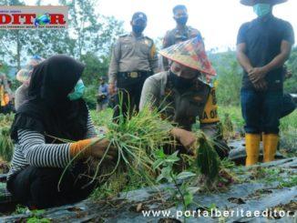 Kapolda Sumbar Toni Harmanto dialog dengan petani bawang.
