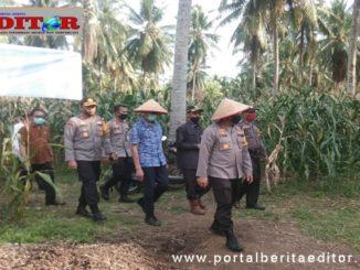 Kapolda dan Gubernur Sumbar saat mengunjungi lahan pertanian anggota kepolisian.