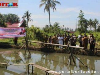 Penebaran bibit ikan di kolam Mesjid Nurul Jihad PDTM.