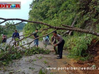 Babikanmas Polsek sipora bersama Kepala Desa Goisooinan membersikan ruas jalan lintas menuju kabupaten pohon tumbang dan tanah longsor.