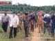 Wagub Nasrul Abit didampigi Bupati Yulainto saat meninjau Teluk Tapang.