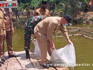 Wagub Nasrul Abit mebarkan bibit ikan nila.
