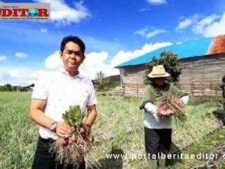 Nofi Candra bersama petani bawang.