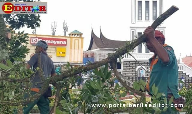Pembersihan dahan kayu pohon pelindung yang ada dalam kota Bukittinggi oleh DLH setempat.