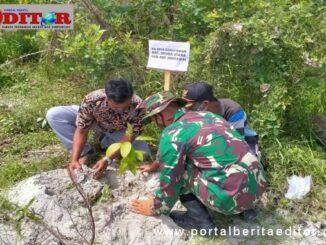 Penanaman pohon pinus didesa Goisooinan pantai wisata Goisooinan di hari HUT TNI ke 75.