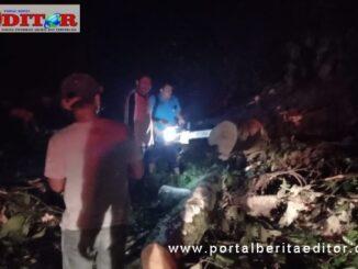 Pembersihan pohon tumbang di Lurah Barangin.