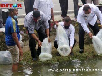 Plt Walikota Pariaman saat melepas benih ikan di irigasi Desa Sungai Pasak.