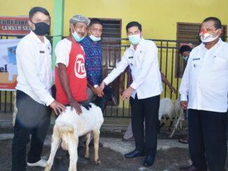 Walikota Sawahlunto saat menyerahkan bantuan ternak.
