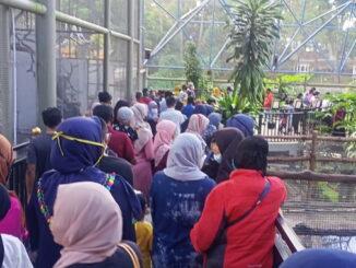 Inilah kondisi di kebun binatang Bukittinggi pada sore Rabu, 23 Desember 2020.