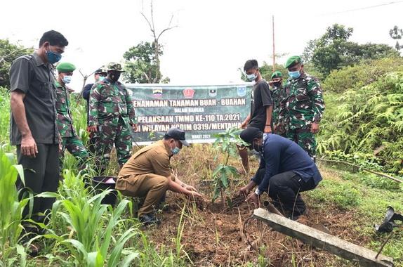 Penanaman pohon buah di lahan Kosong di Mentawai.