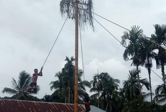 Acara panjat pohon pinang di Nagari Simpang,Pasaman.