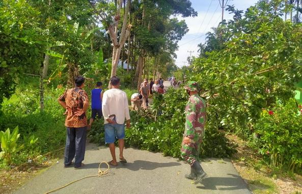 Anggota TNI personil Satgas Pra TMMD goro bersama masarakat membersihkan pohon pohon kayu yang mengganggu ketertiban umum.