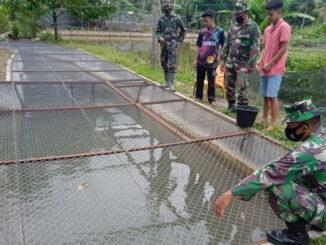 Anggota Satgas TMMD meninjau kolam pembibitan ikan milik Nurman di jorong Talang.