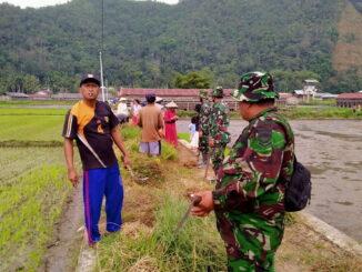 Anggota satgas TMMD goro bersana masarakat membersihkan jalan lingkungan.