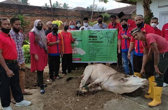 Pemotongan hewan kurban IJP di Payakumbuh.