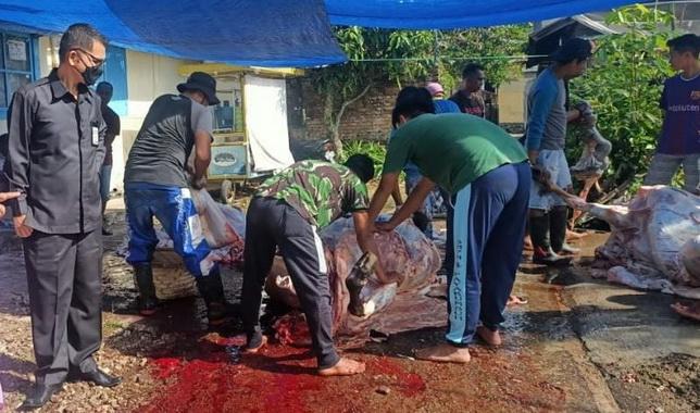 Penyembelihan hewan kurban di mushallah Al Jadid Kelurahan Paritrantang disaksiksn peserta kurban.