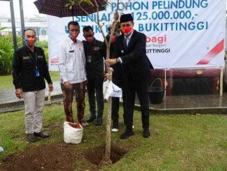 Bibit pohon pelindung CSR BNI untuk kota Bukittinggi.