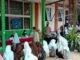 Kepala Sekolah Desvionarita bersama Sekretaris Komite malin Kumis dan siswa saat mengunggu divaksin.